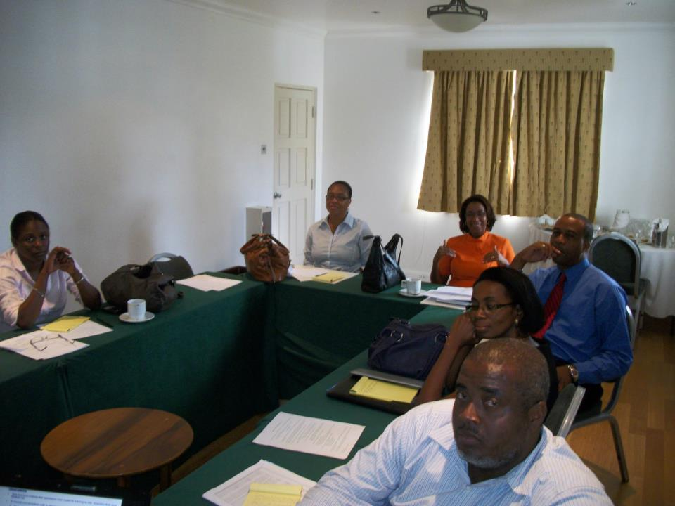 St Vincent and the Grenadines – Fundamentals of  Fraud and Fraud Auditing